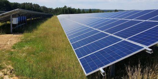 Photovoltaik_Solarmodul_sommer_sonne_PV_freiflaechenanlage_WES_Energy_gruen-1024x512