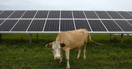 Херсон_солнечные батареи