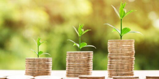 money-2696219_1920_Pixabay_NattananKanchanaprat-1024x512